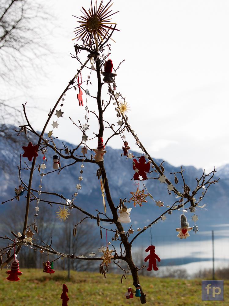 Weihnachtsbaum?